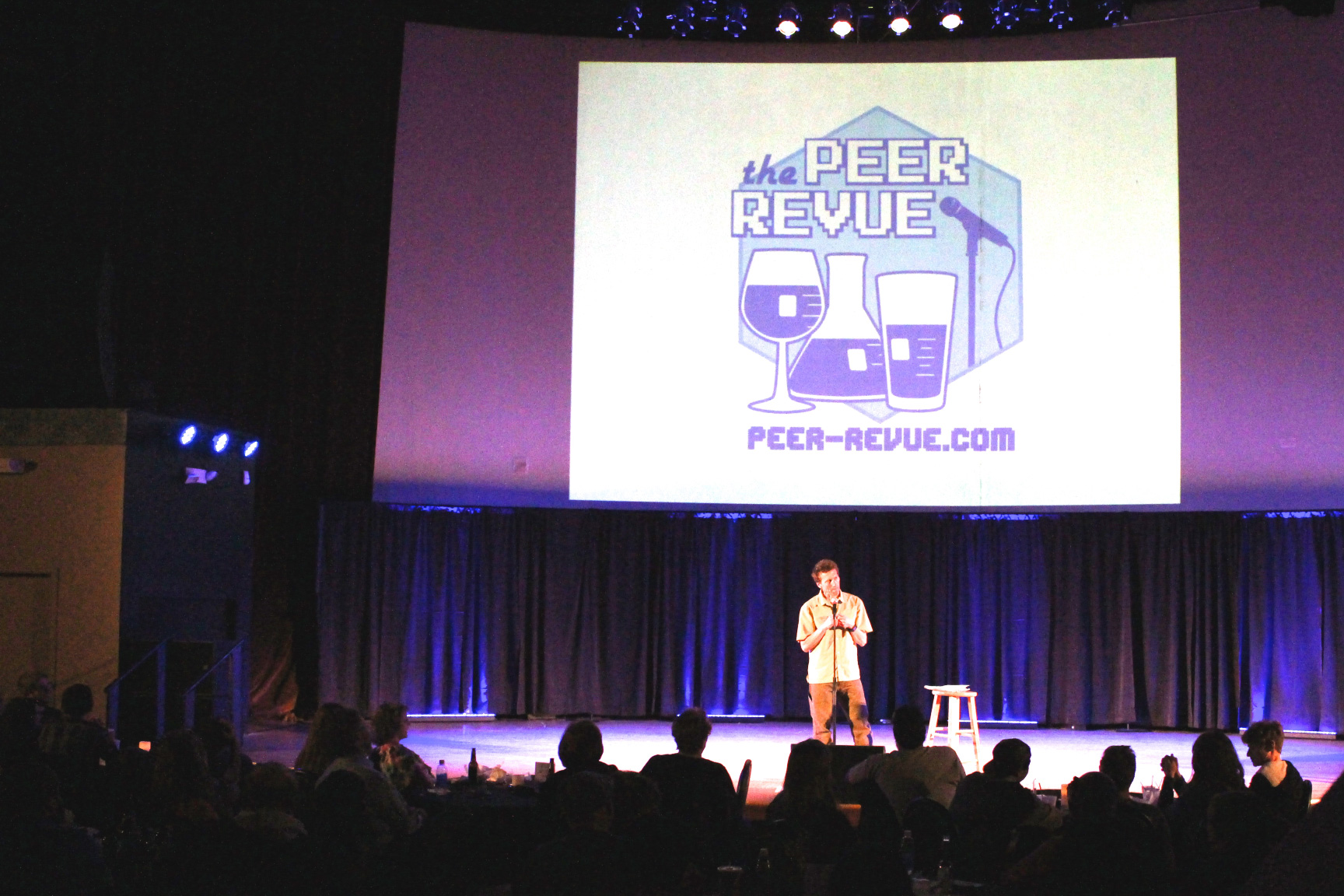 What is the Peer Revue?