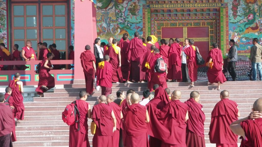 Teaching Evolution to Tibetan Monks